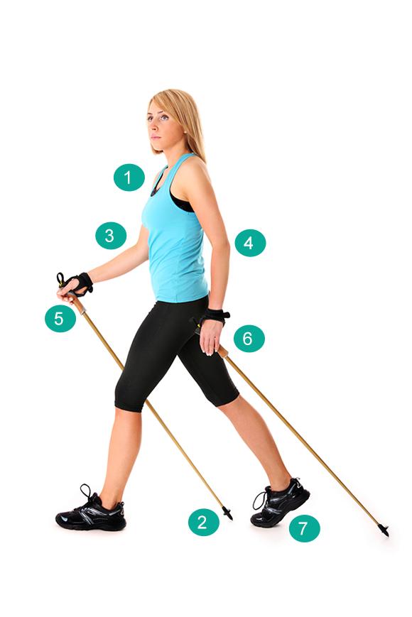 Abnehmtipps - Nordic Walking Technik