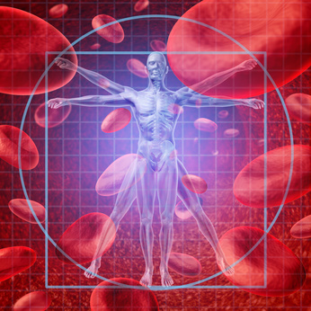 Abnehmtipps - Zucker Blutkreislauf